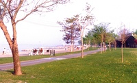 Martin Goodman Trail by Robert Taylor