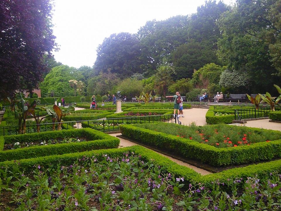 Great Dutch Gardens Catalog | Fasci Garden