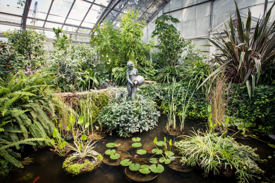 Allan Gardens An Oasis In The Middle Of The City Jamie Sarner