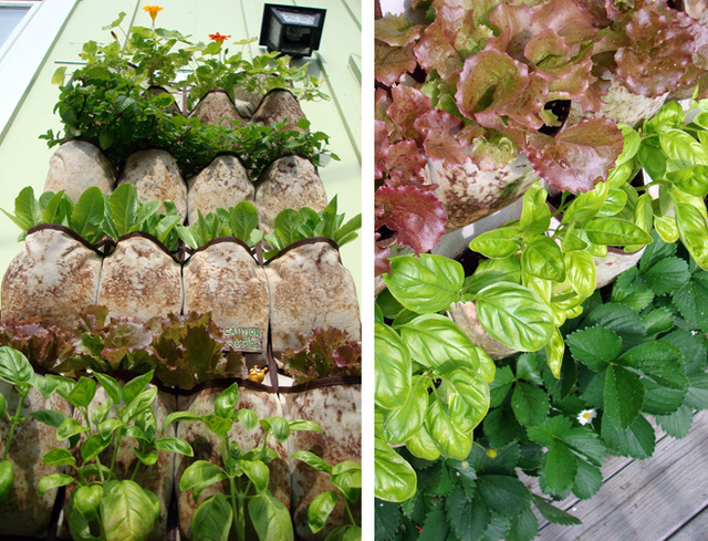 Vertical Garden With Herbs And Strawberry By Laura