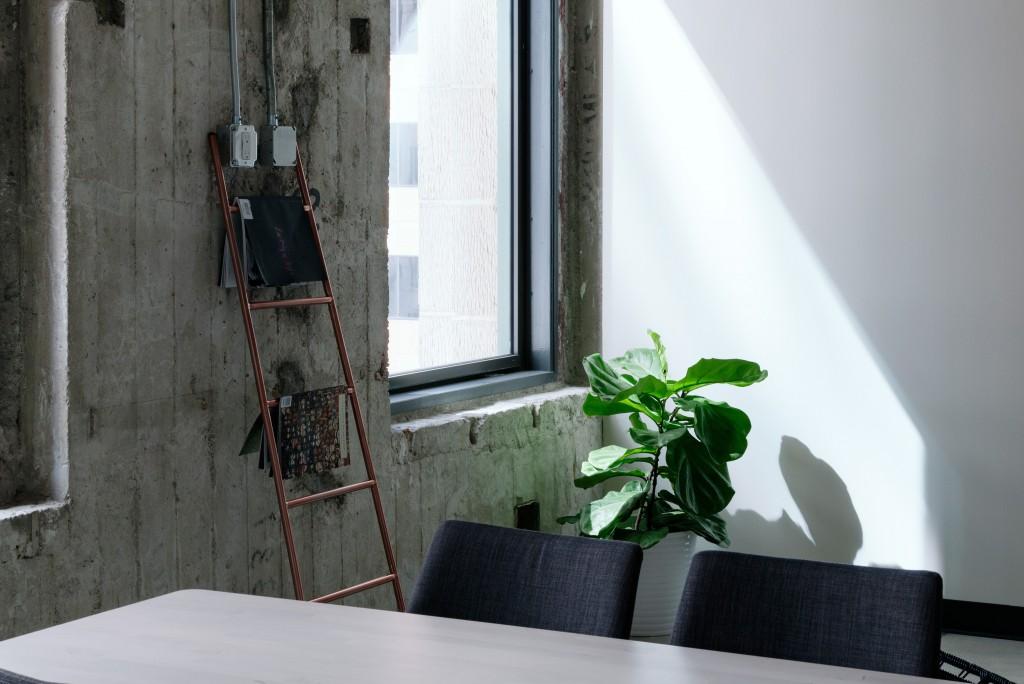 add-a-plant-to-loft